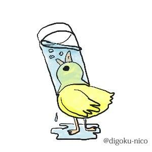 毎日たっぷりの水を!